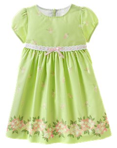 Baby Girl Floral Border Dress